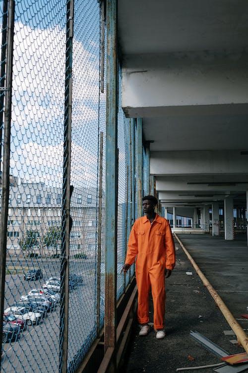 Gratis lagerfoto af afroamerikansk, appelsin, bod