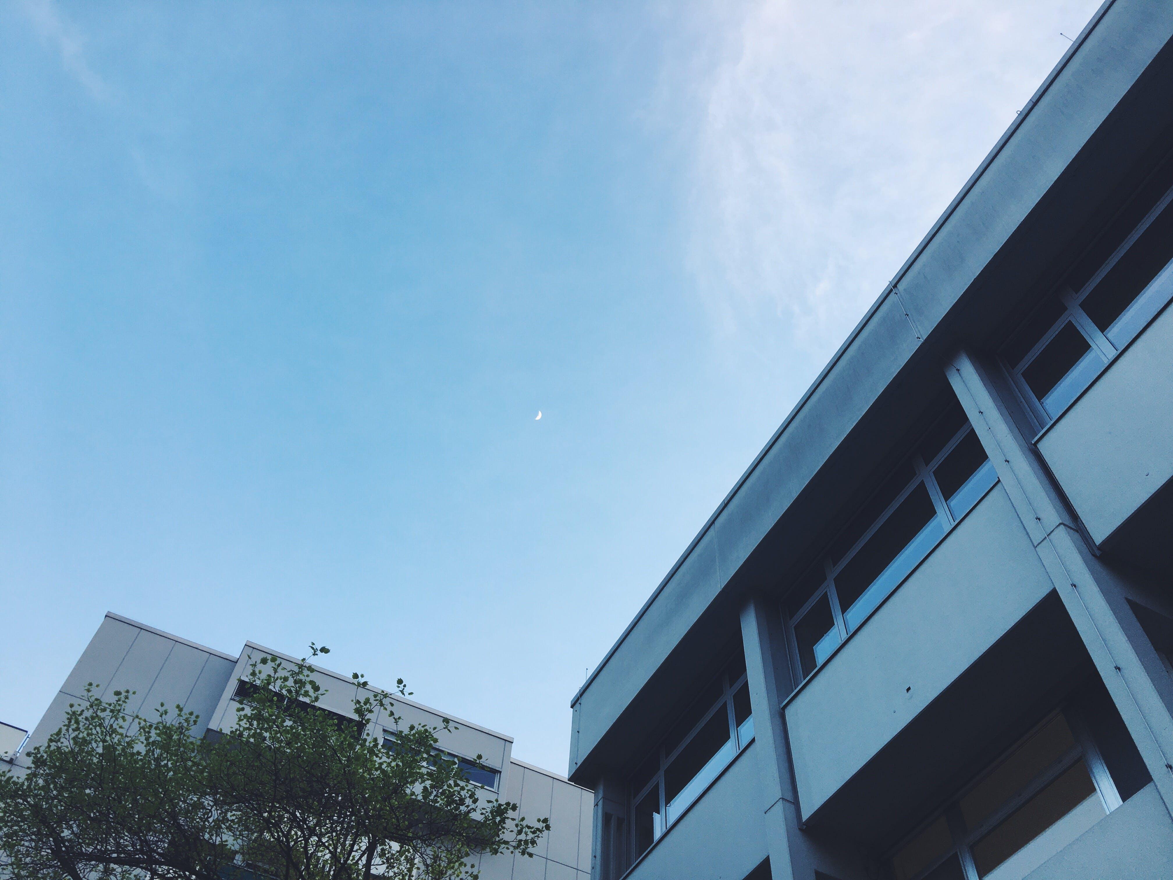 Free stock photo of blue sky, moon, sky