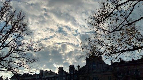 Gratis lagerfoto af skyer