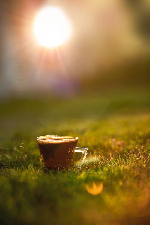 Photos gratuites de café arabe, café turc, coucher de soleil