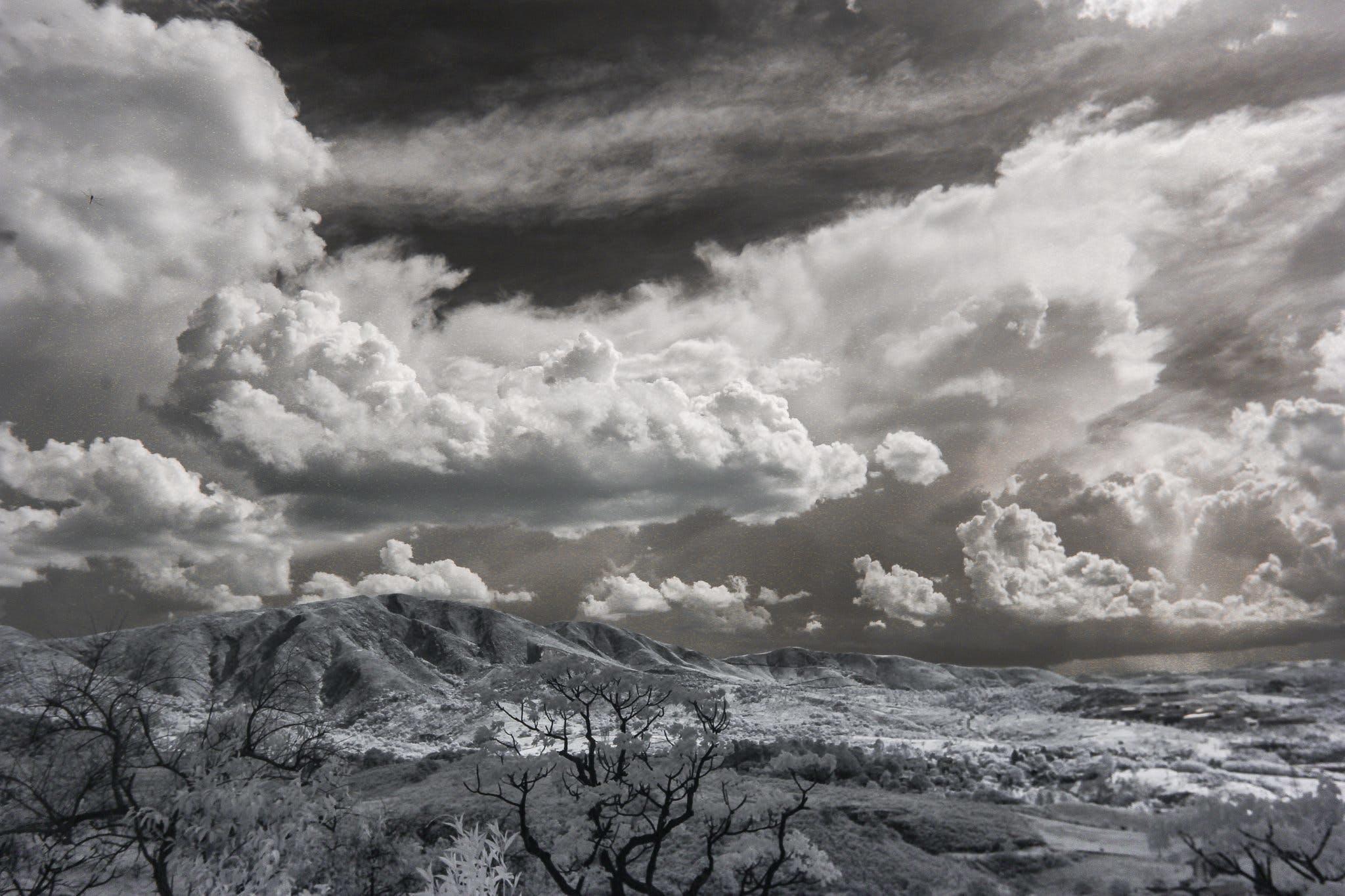 Snow Covered Trees Under Cumulonimbus Clouds