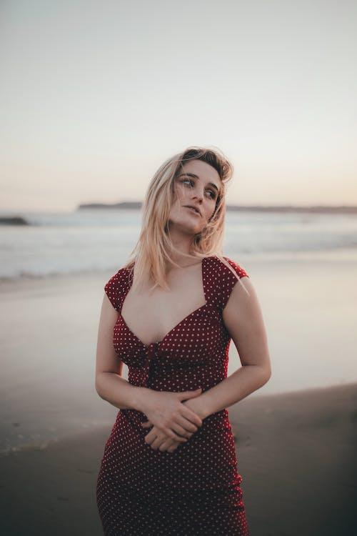 Gratis stockfoto met achtergrond, blondine, buiten