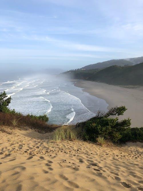 Brown Sand with Green Grass Near Shoreline