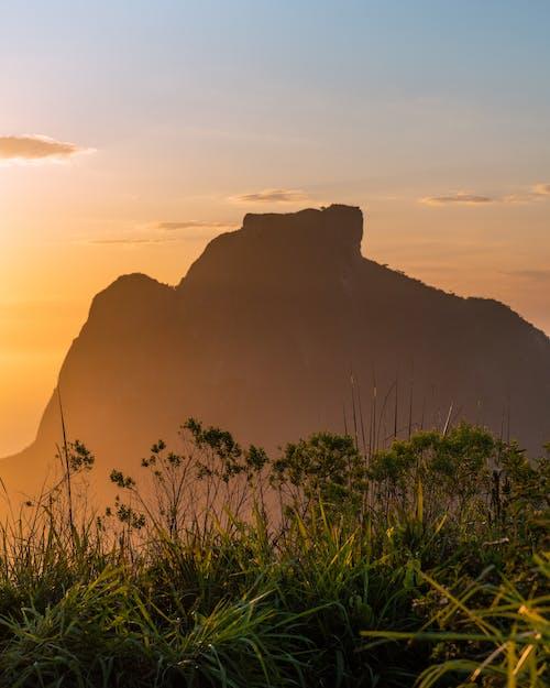 Green Grass Near Mountain during Sunset
