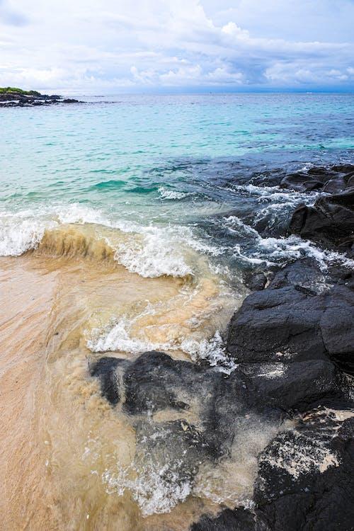 Gratis arkivbilde med strand