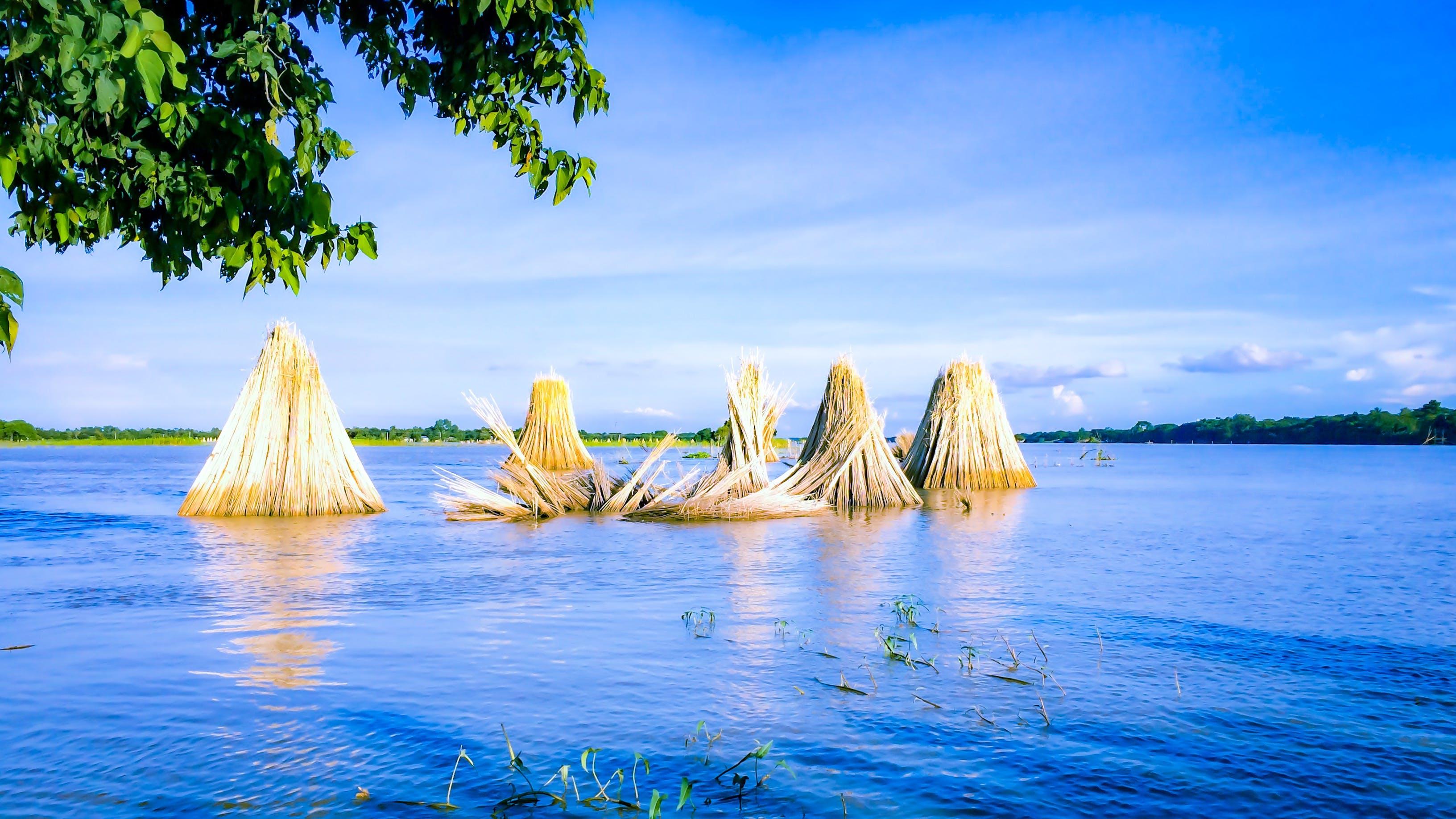 Free stock photo of rural, flooded, blue water, bangladesh