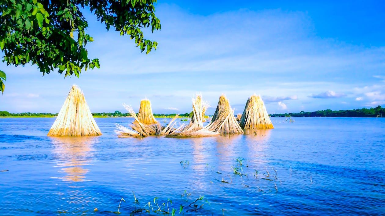 бангладеш, бангладешський повені, блакитна вода