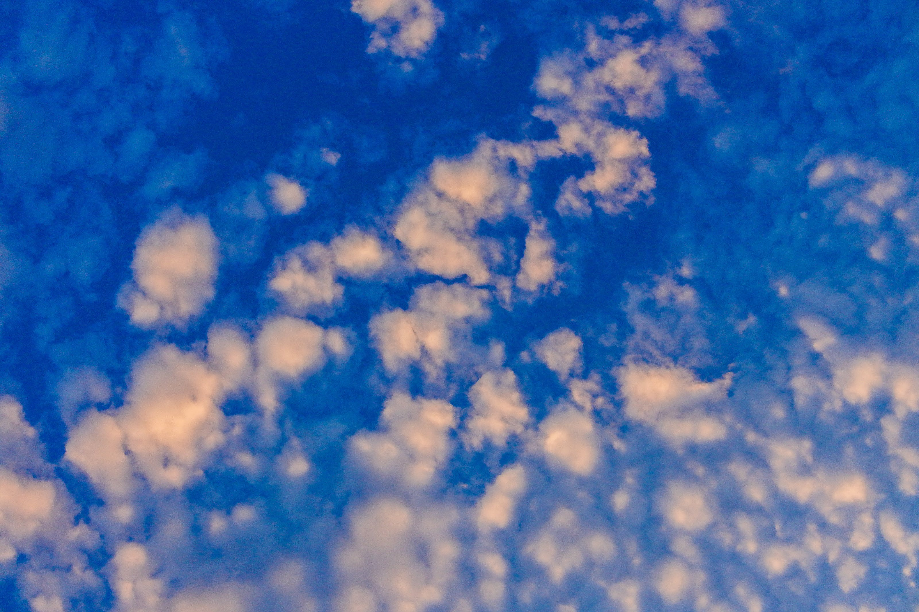 Photo of White Cloud Blue Skies