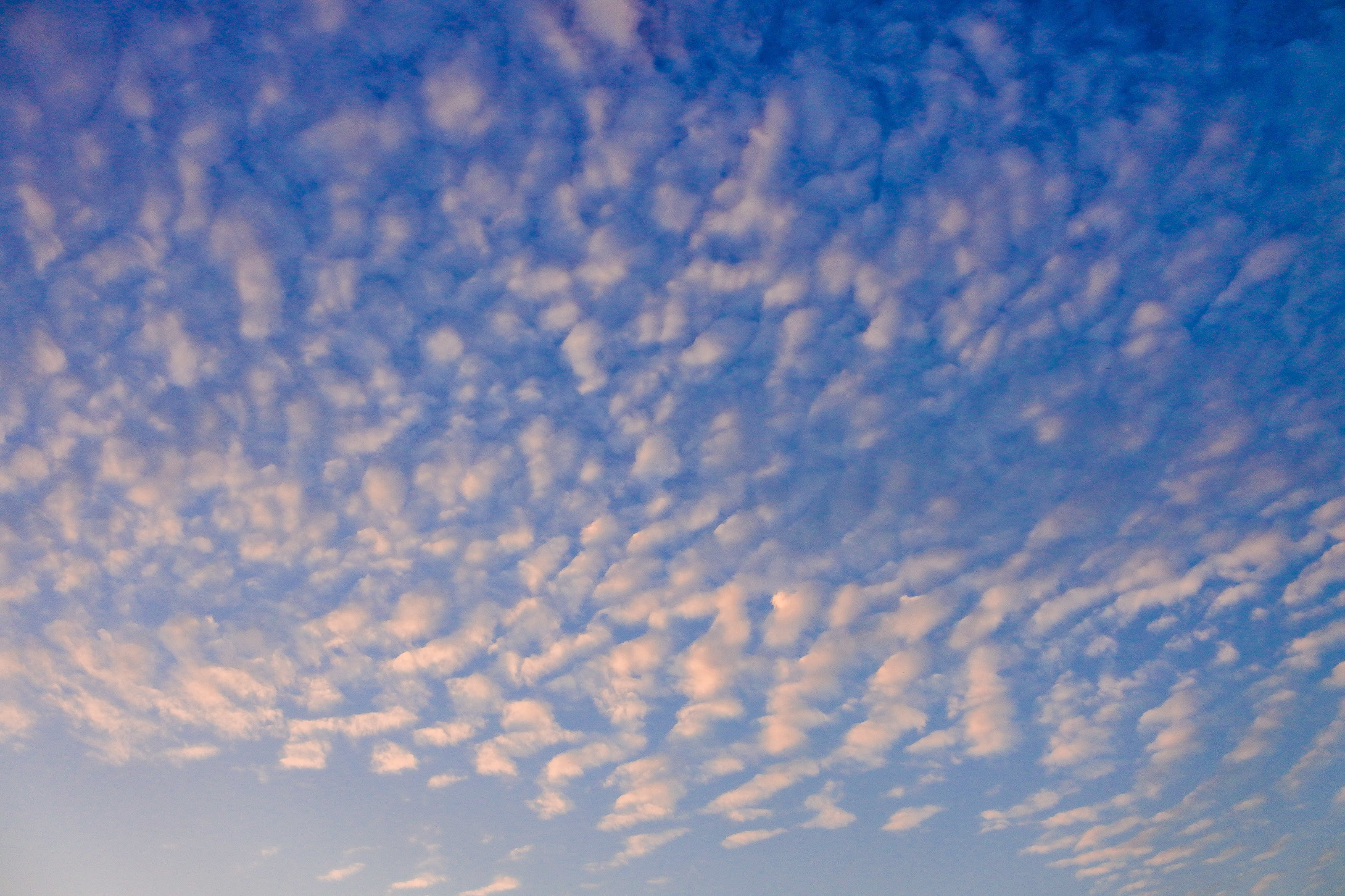 Foto stok gratis alam, angkasa, awan, bentangan awan