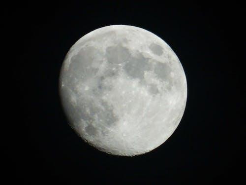 月, 満月, 空の無料の写真素材