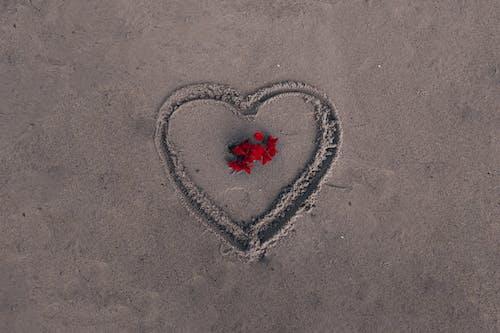 Free stock photo of art photo, love