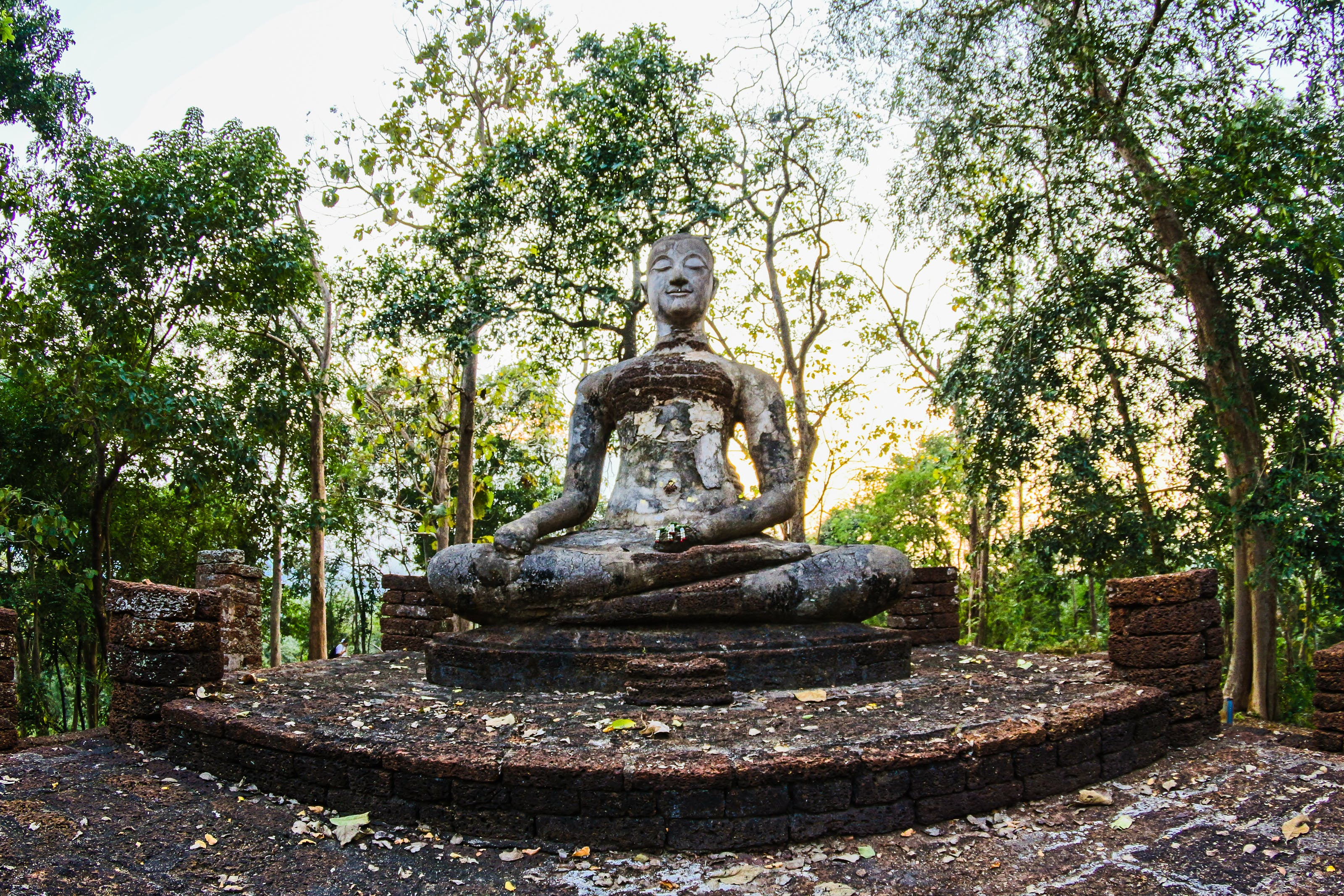 Religious Statue Surrounded by Green Trees