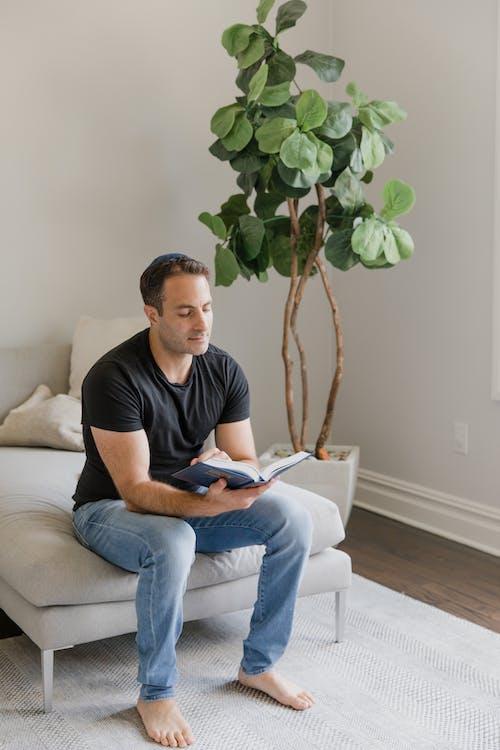 Бесплатное стоковое фото с в помещении, Взрослый, диван
