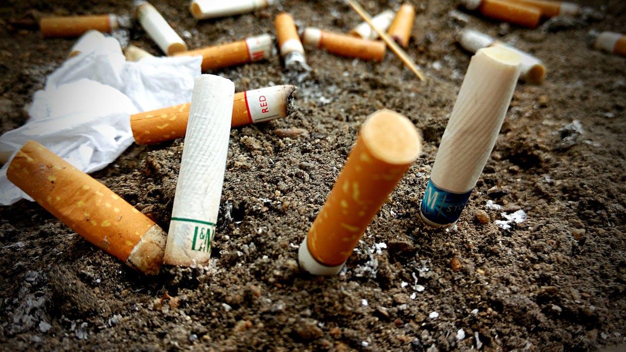 Free stock photo of cigarette, cigarette butt
