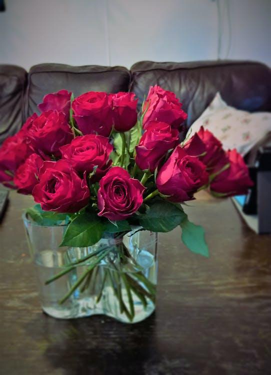 mawar, mawar mawar merah, vas bunga mawar