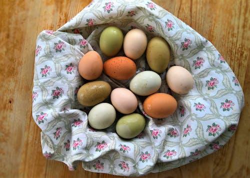 Free stock photo of eggs, raw eggs
