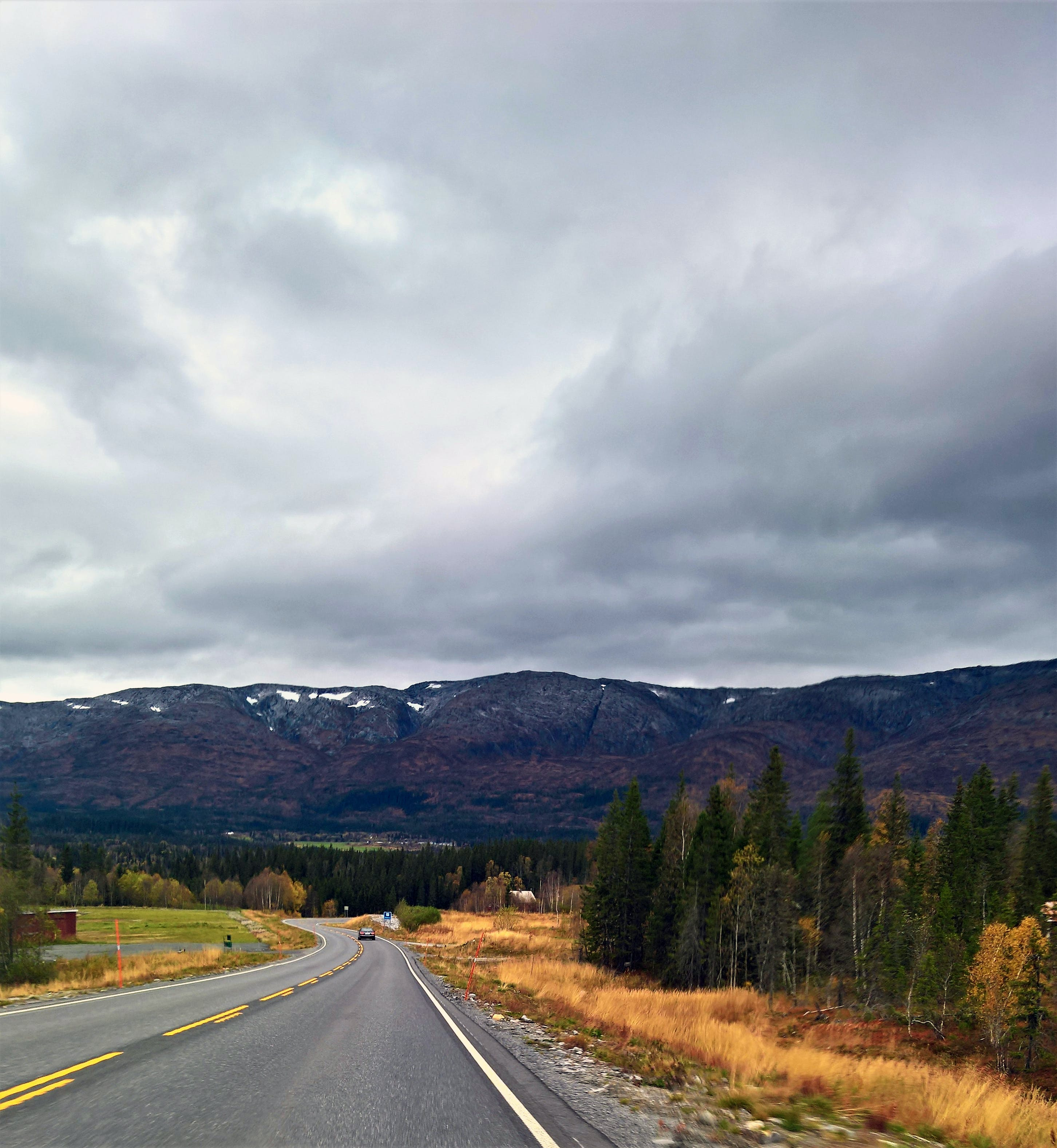 Gray Asphalt Road With Trees Under Cloudy Sky