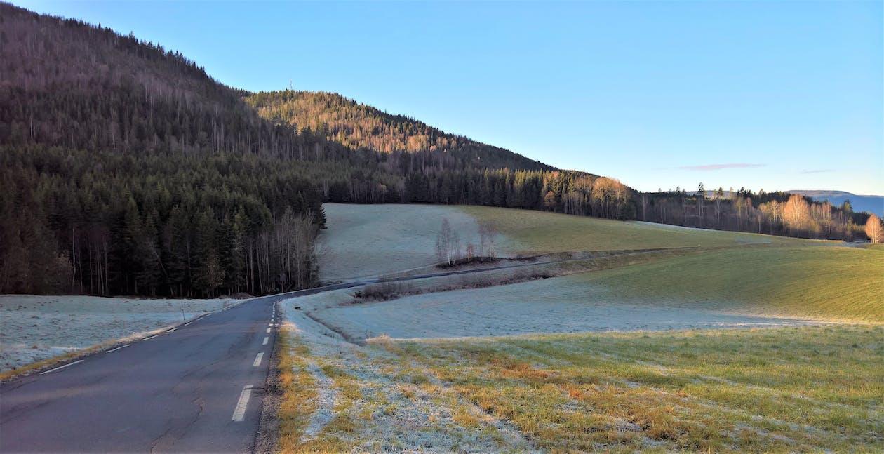 bjerg, frost, frostigt landskab