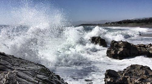 Foto profissional grátis de água, costa, litoral, mar