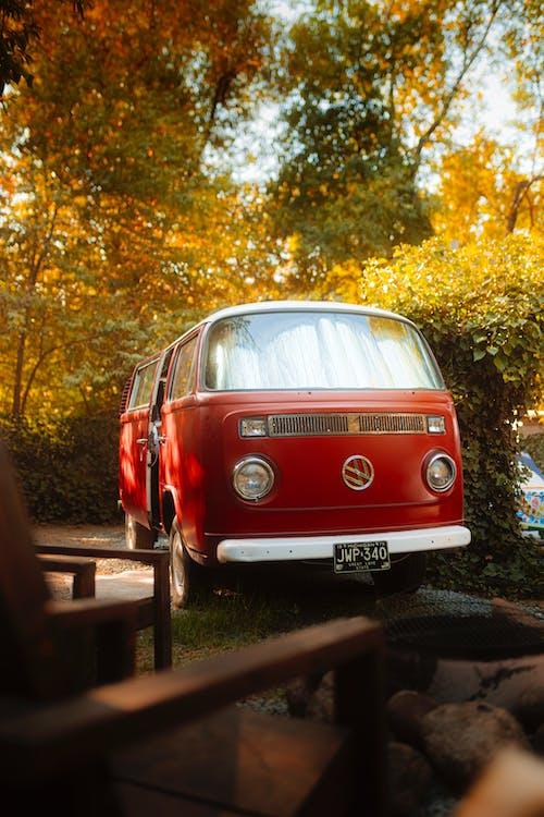 Free stock photo of autumn, autumn leaf color, car