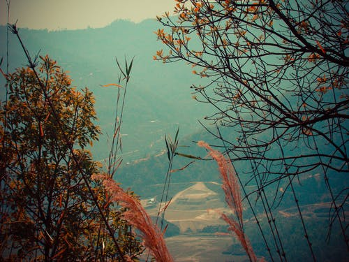 Free stock photo of hill, mountains, nature, nepal