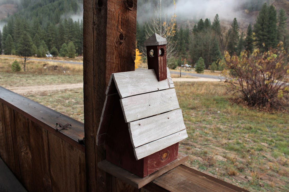 casa d'ocells, minimalista