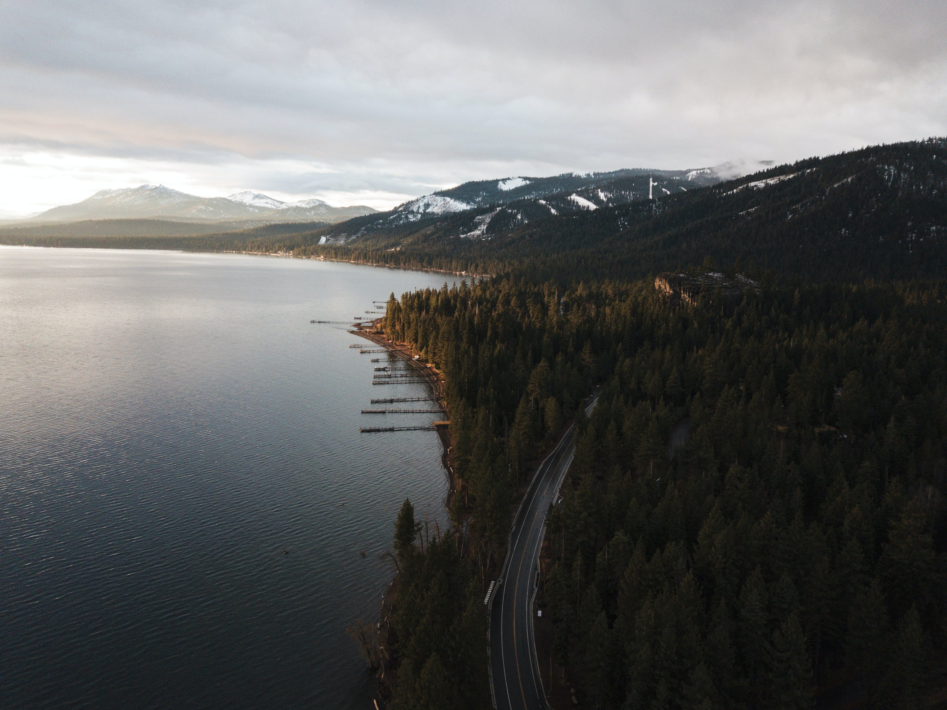 Aerial Photography of Dense Forest Near Body of Water