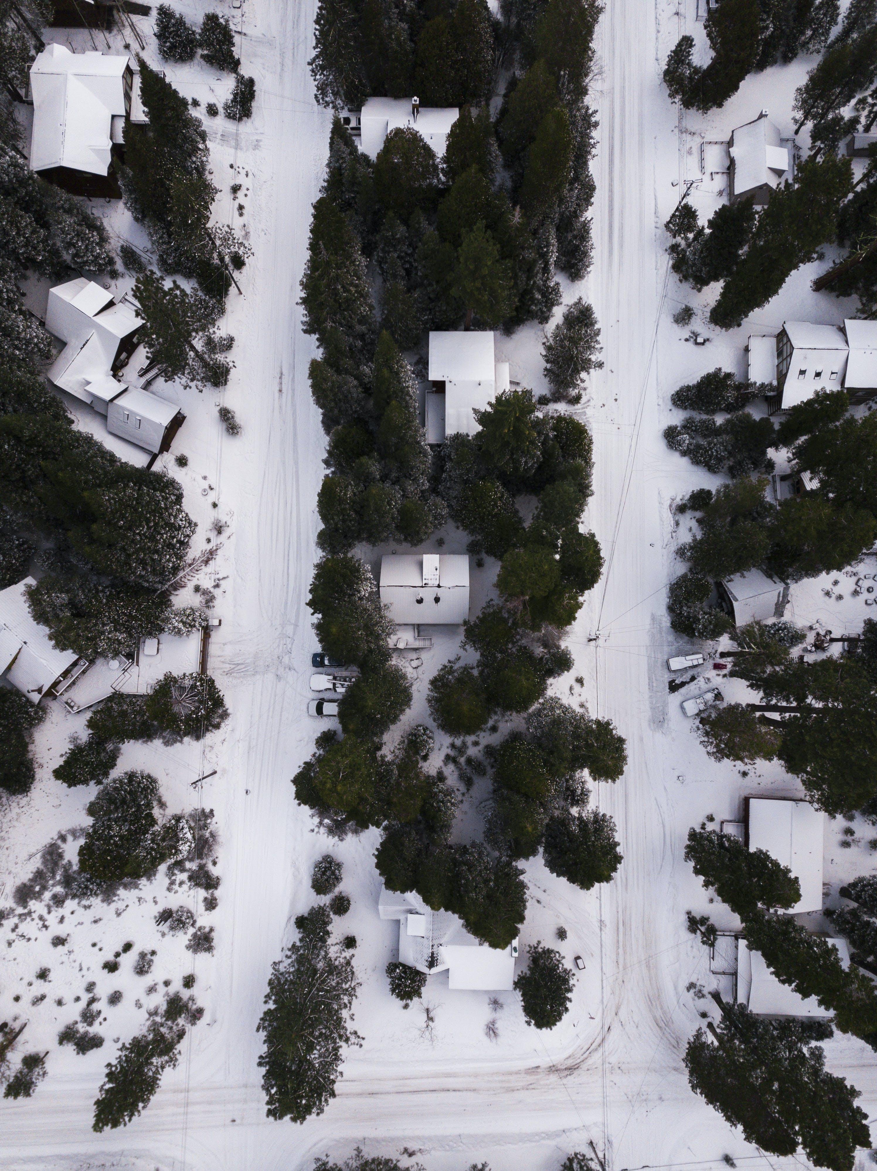 Kostenloses Stock Foto zu autos, bäume, häuser, jahreszeit