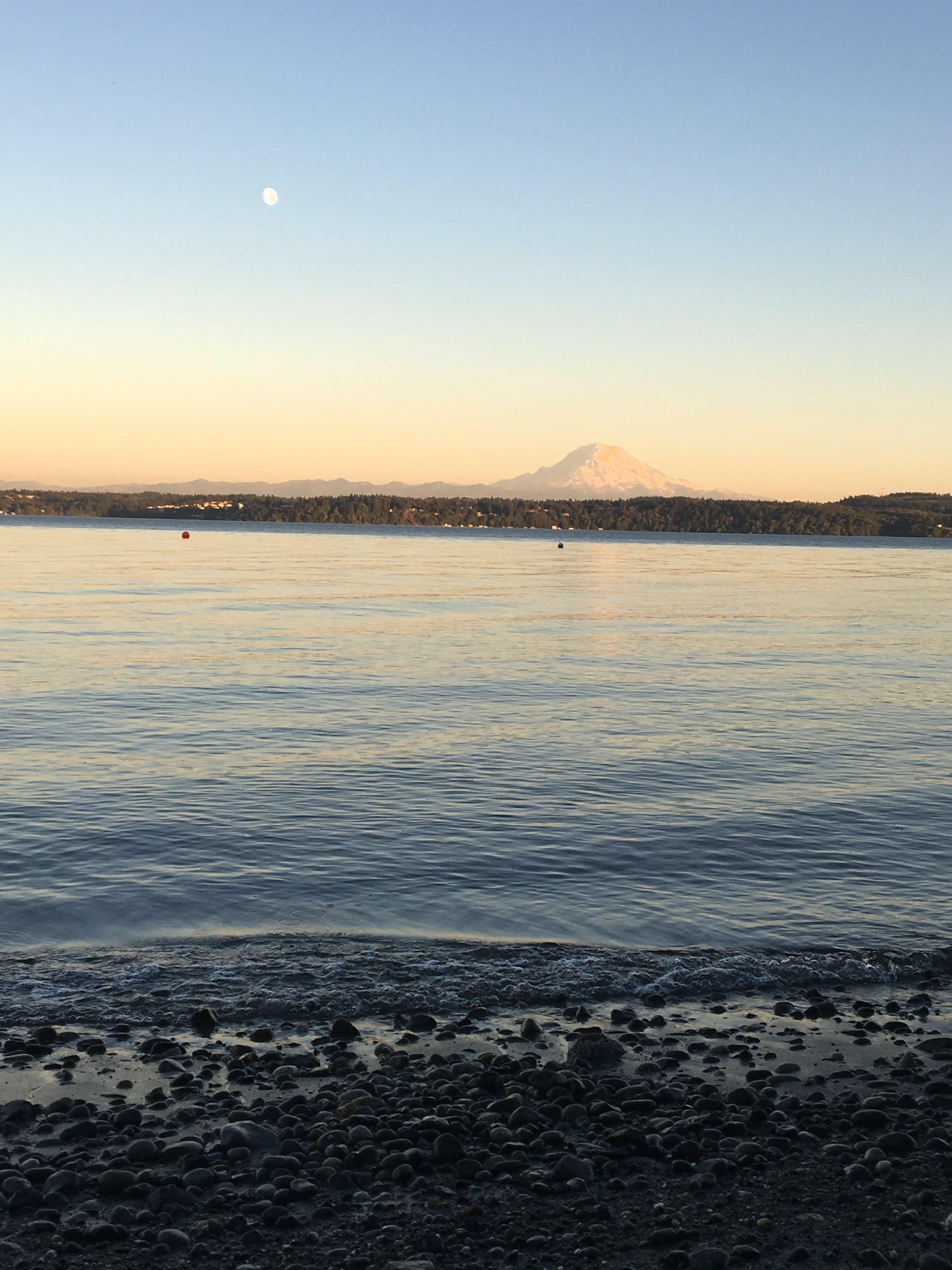 Free stock photo of beach, blue sky, landscape, Mount Rainer
