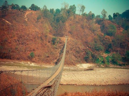 Free stock photo of bridge, footbridge, nature