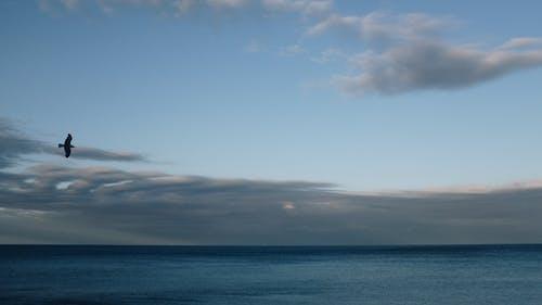 açık hava, akşam, akşam karanlığı içeren Ücretsiz stok fotoğraf