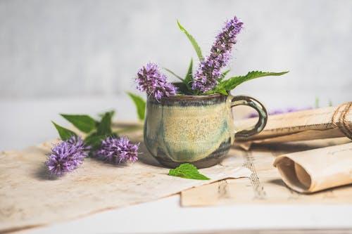 Fotos de stock gratuitas de antiguo, aromaterapia, carta vintage