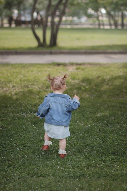 Imagine de stoc gratuită din bebeluș, caucaziană, copil