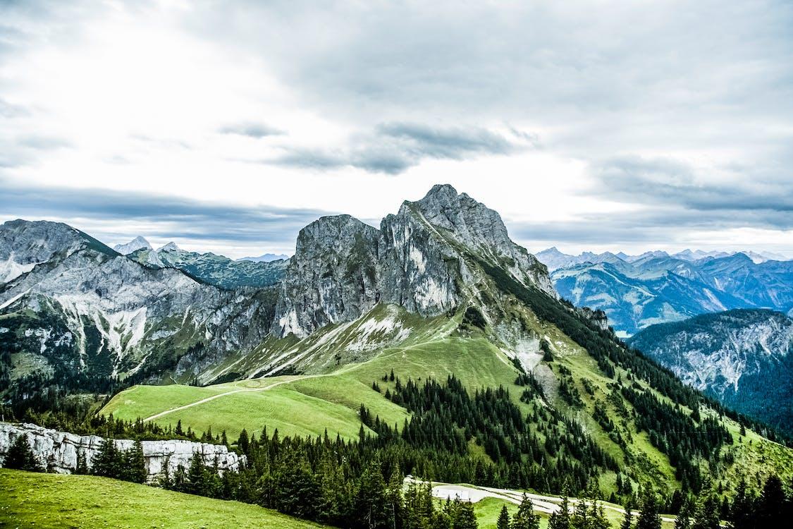 гора, горы, деревья