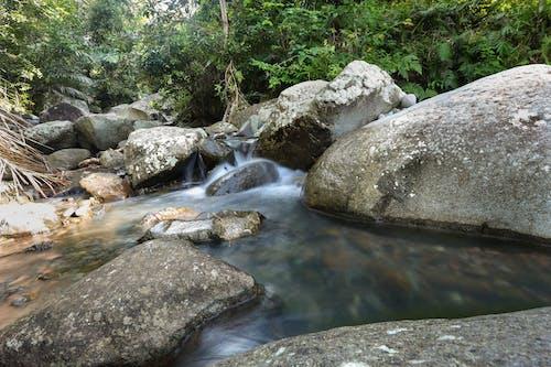 Foto d'estoc gratuïta de aigua, natura