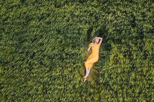 地平線, 天, 女人 的 免費圖庫相片