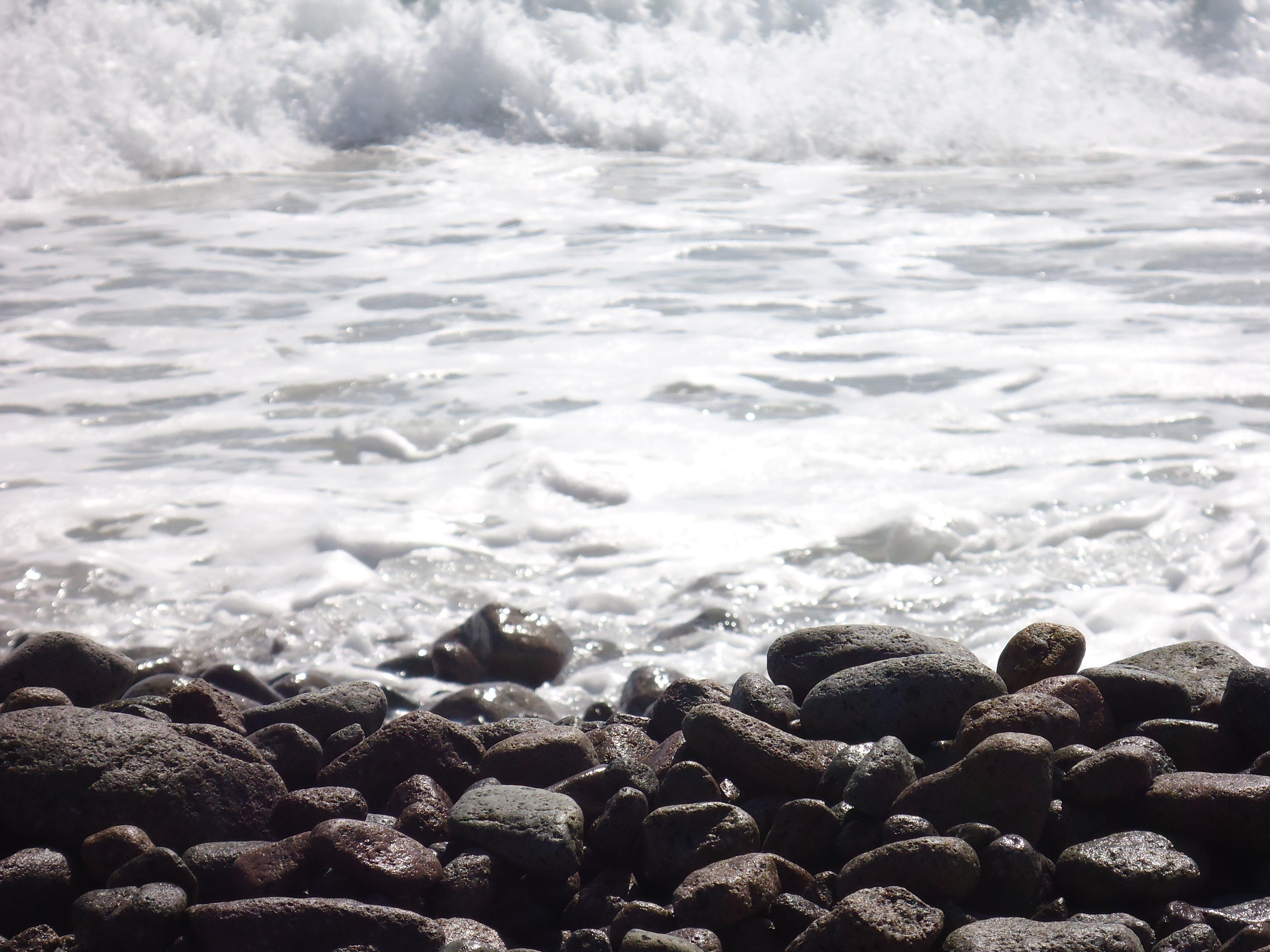 Free stock photo of sea, seashore, stones