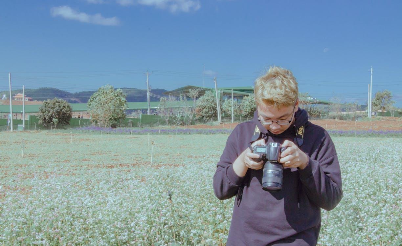 dagsljus, fält, fotografering