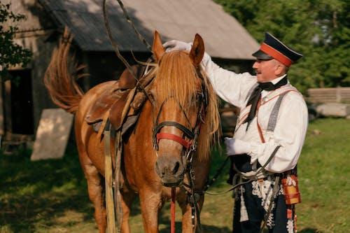 Man Beside a Brown Horse