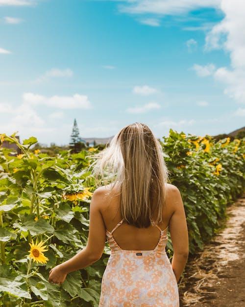 Woman Standing on Field of Sunflower