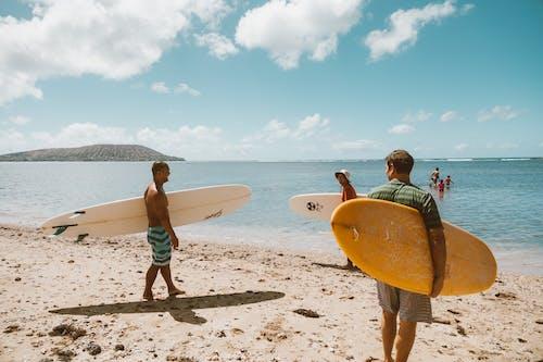 Photos gratuites de amusement, bord de mer, côte