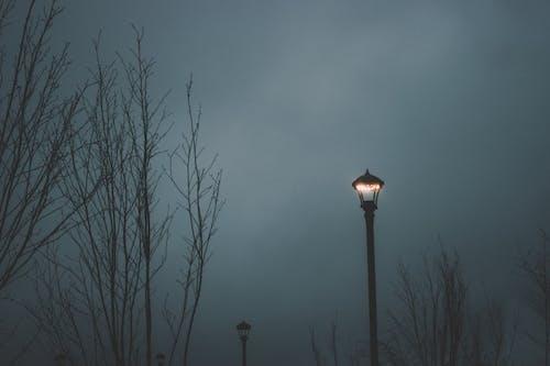 Základová fotografie zdarma na téma krajina, obloha, pouliční osvětlení, příroda