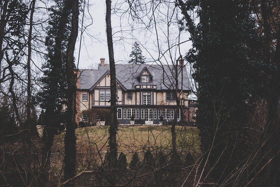 архітектура, газон, дерева