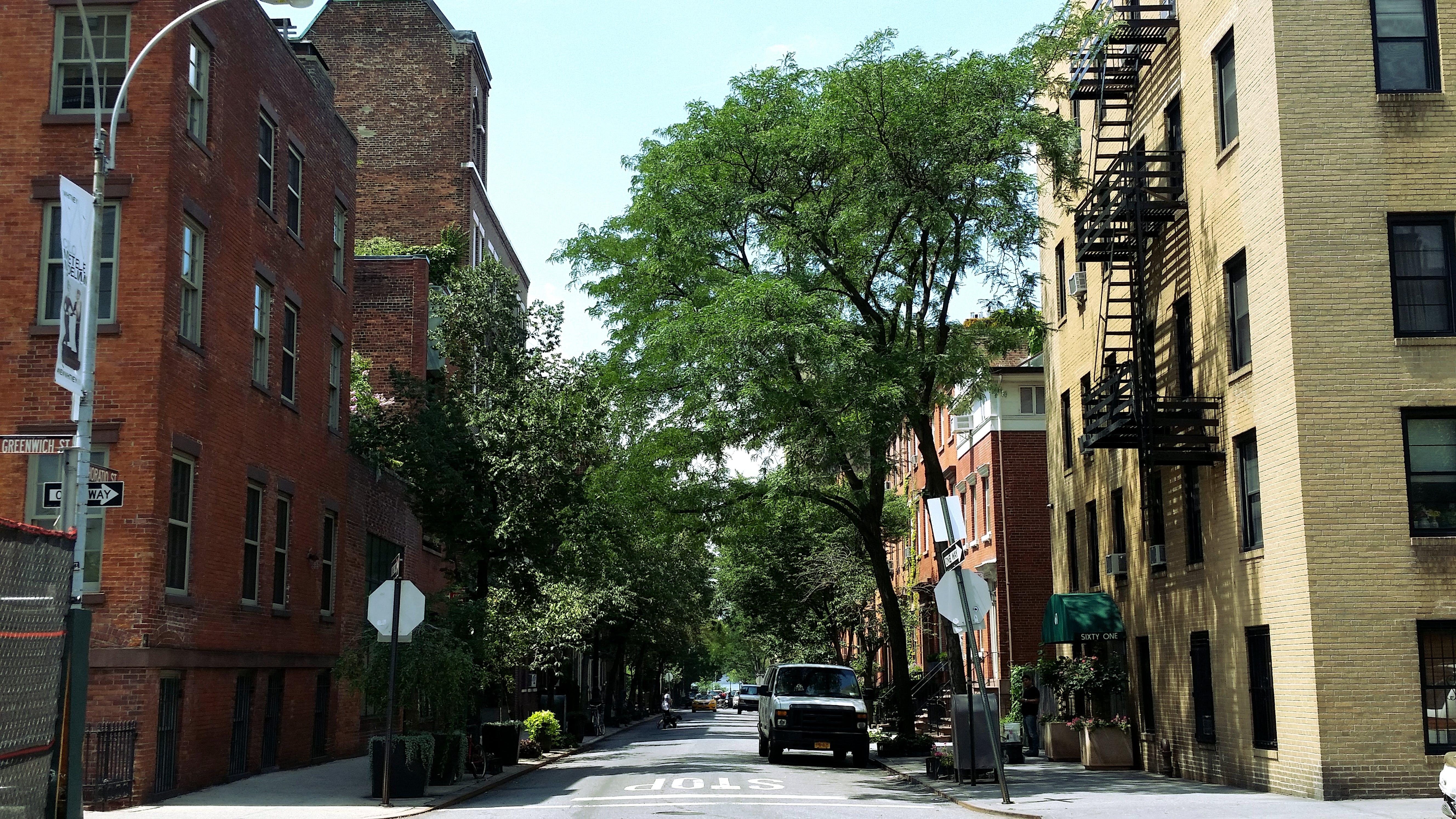 Gratis lagerfoto af by, farverige huse, gade, grøn