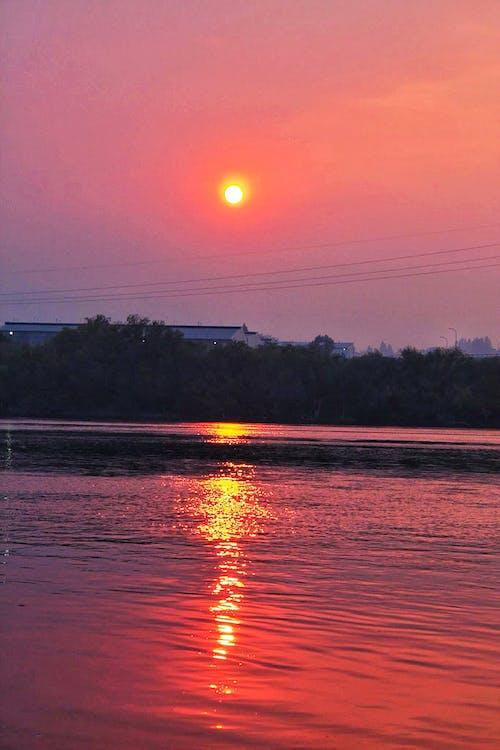 Gratis lagerfoto af rød himmel, rød sol, skovbrand