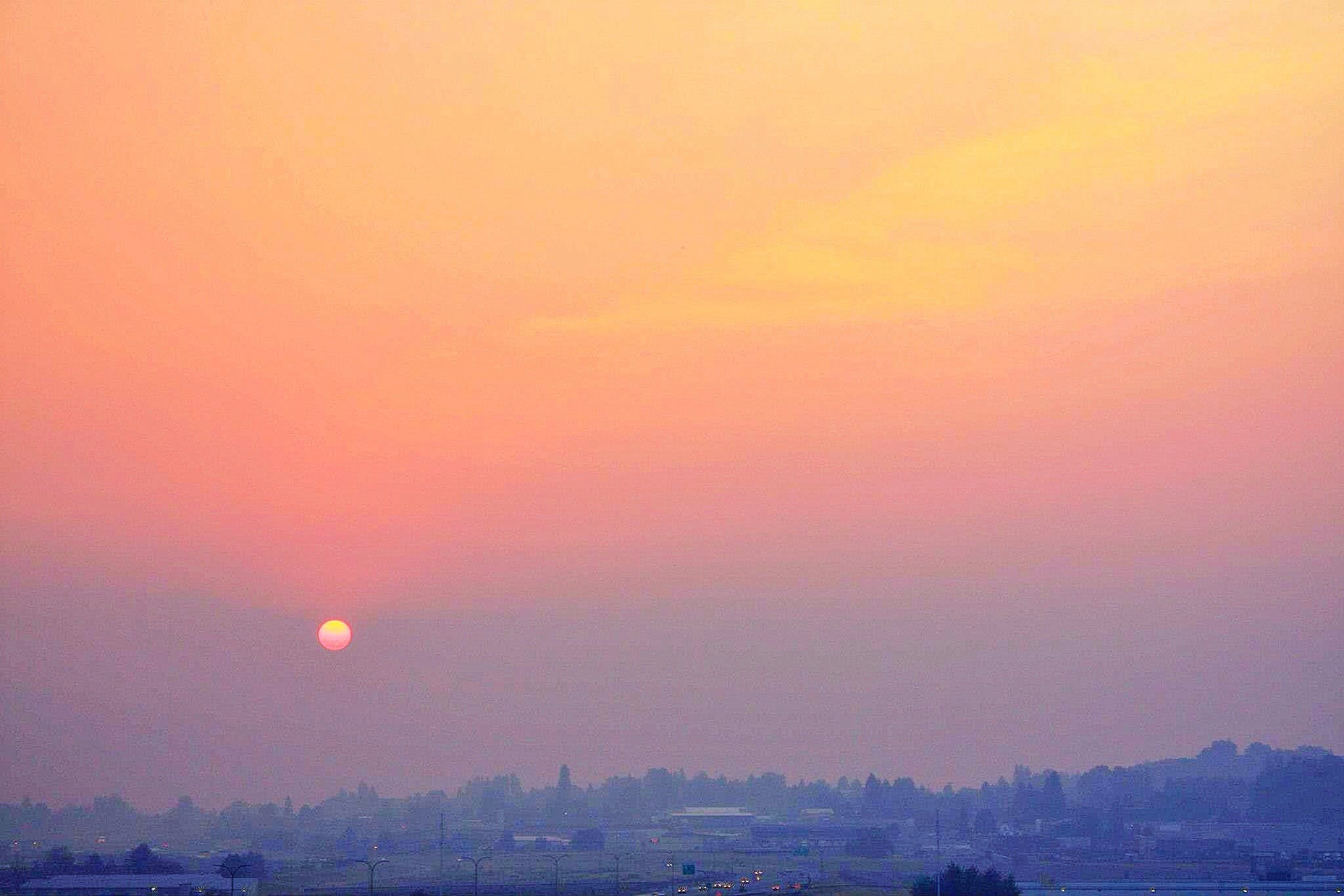 Free stock photo of forest fire, landscape, red sun, smoke