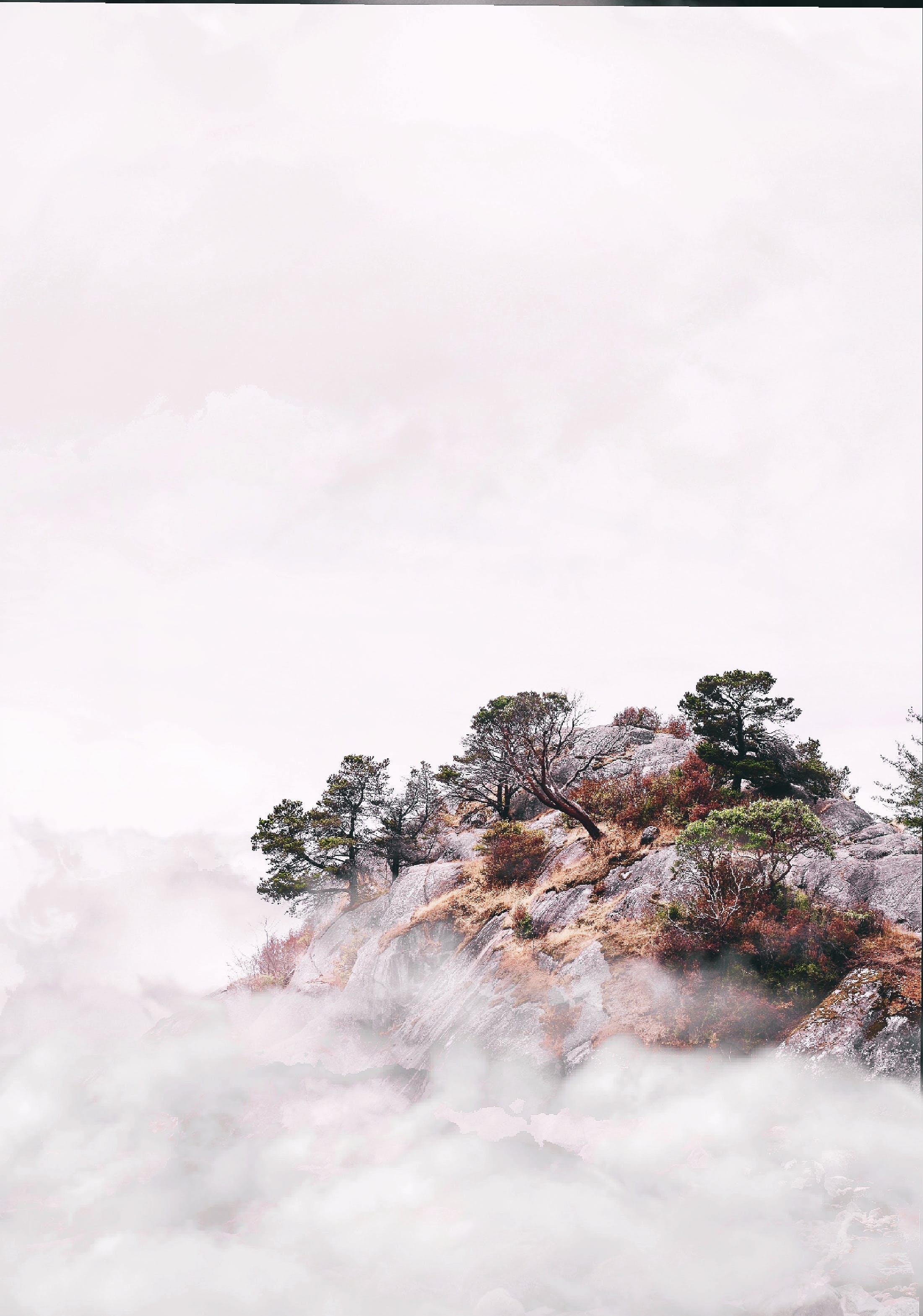 冷, 天性, 天氣, 日光 的 免費圖庫相片