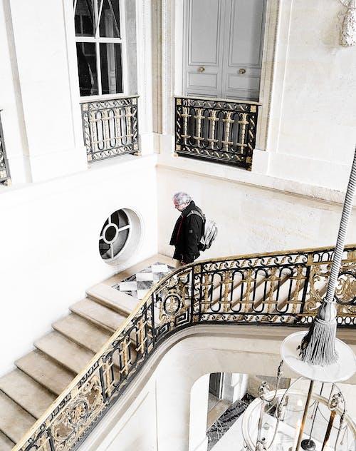 Foto d'estoc gratuïta de aranya, arquitectura, barana, contemporani