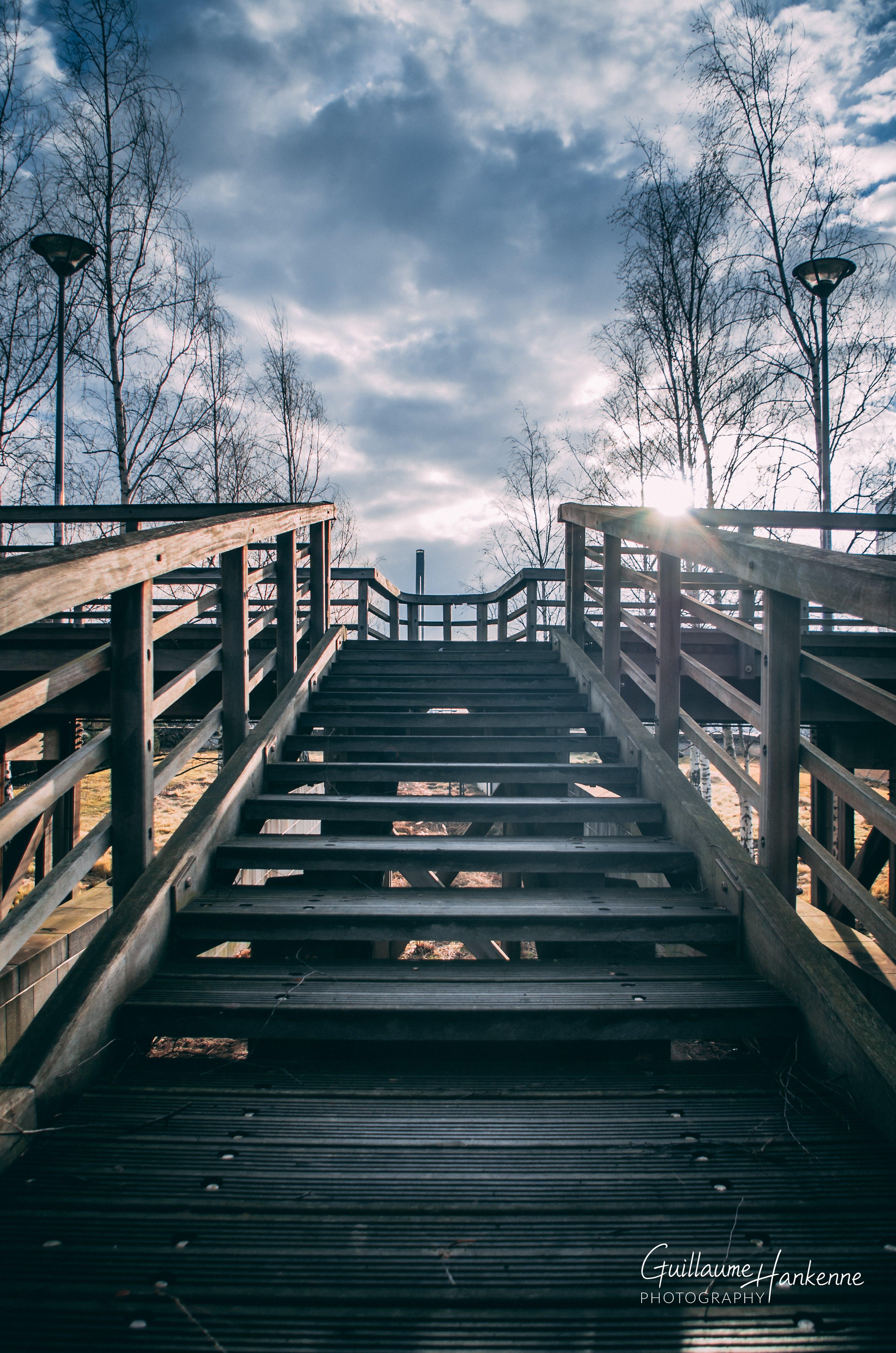 Free stock photo of bridge, light, low angle photography, moody