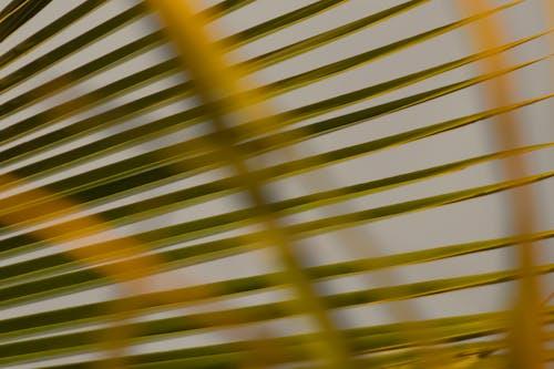 Foto stok gratis abstrak, baris, berbayang